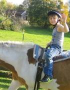 PUNKT_Reiten_Pferd_1